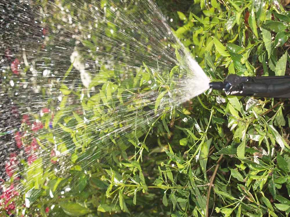irrigation companies Altamonte Springs FL